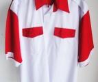 F1 Shirt 6